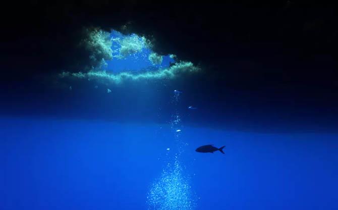 Océans : sauver les « communs »