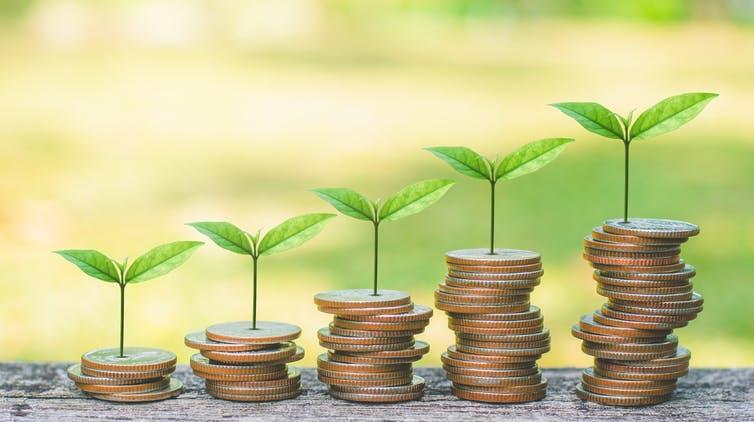 Le budget vert consiste à évaluer les dépenses et recettes des États pour une stratégie bas carbone plus efficace. Shutterstock