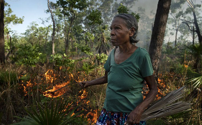 Contre les méga feux, la tradition du brûlage culturel