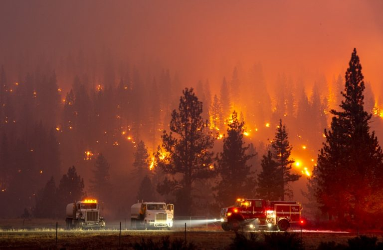 "Firefighters battle the ""Hog fire,"" a blaze so large it has generated its own climate, near Susanville, California on July 20, 2020 (Photo by Josh Edelson / AFP)"