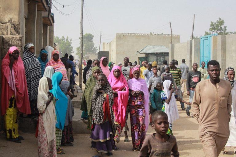 Dans une rue de Sajeri, près de la ville de Maiduguri (nord du Nigeria), en janvier 2019. L'Afrique héberge la plus grande diversité génétique au monde. (Photo : Audu Ali MARTE / AFP)