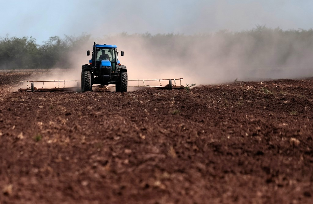 A soybean field in Argentina (Cordoba province) is treated with glyphosate, a possibly carcinogenic herbicide according to WHO. (Photo: DIEGO LIMA / AFP)