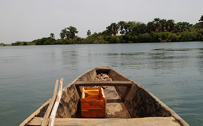 Biodiversity in Guinea: a dam in question