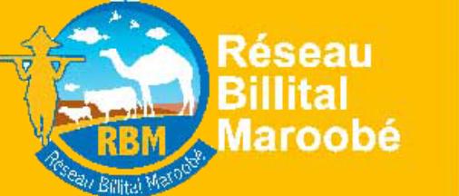 RBM Réseau Billital Maroobé