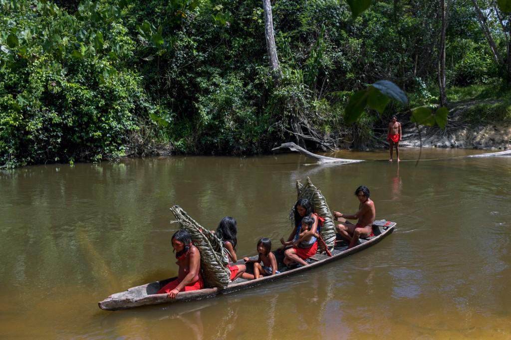 Visuel Comment protéger les forêts sans menacer leurs habitants